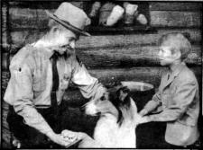 Hal with Lassie & Timmy